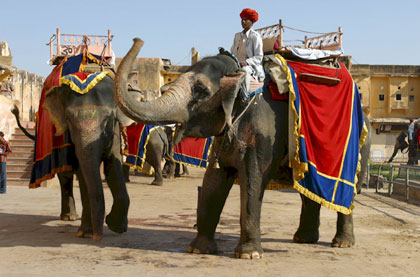 Rajasthan delhi and agra tour