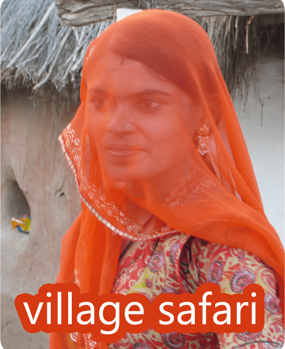 Jodhpur village safari
