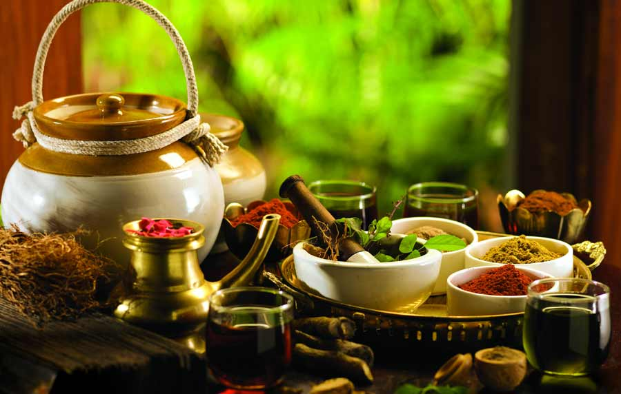 Kerala and Ayurveda Tour