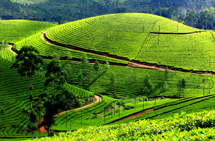 Kerala all inclusive Holidays Tour