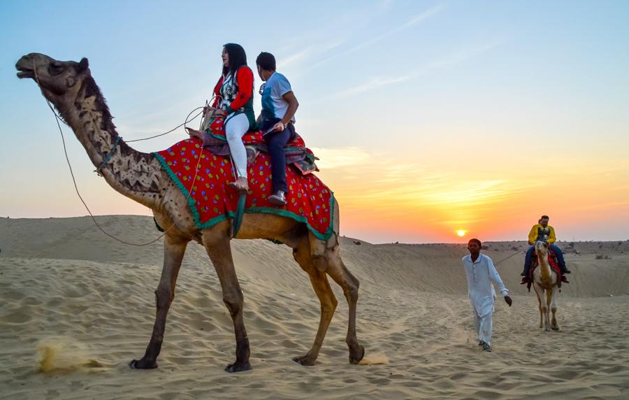 jaisalmer sightseeing with  tour guide & desert dinner, camel safari