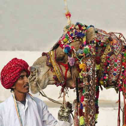 Jaipur Pushkar Tour 3 days