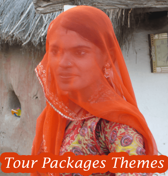 Rajasthan Tour Packages Themes