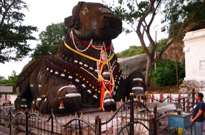 Vishvanath and Nandi Temple